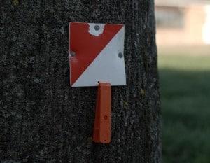teaching-orienteering