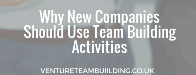 NewCompaniesAndTeamBuilding